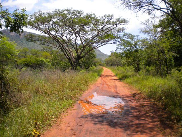 Conrad Stoltz The road gets bigger