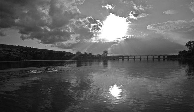 conrad-stoltz-swimming-lydenburg-dam-black-and-white
