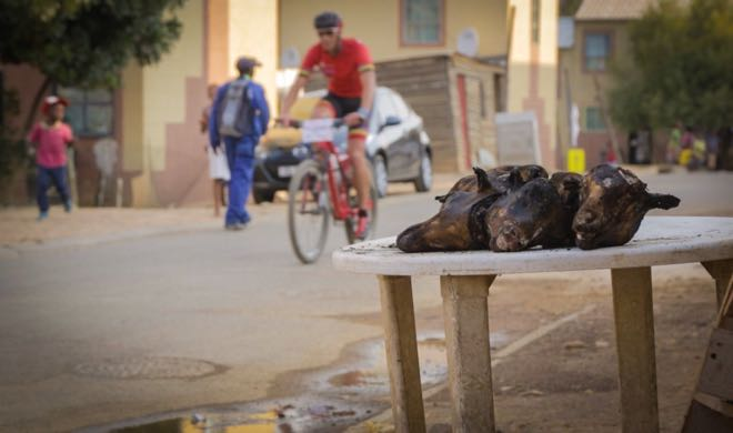 Conrad Stoltz Songo Champions Race Kayamandi roasted goat heads