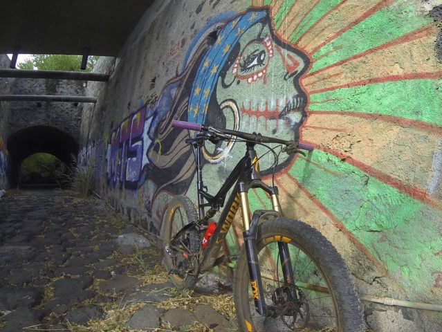 Conrad Stoltz Xterra Reunion Specialized 6fattie graffitti